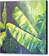 Banan Leaf Canvas Print by Carol P Kingsley