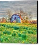 Barn In Field Of Flowers Canvas Print by Geary Barr