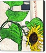 Barrio Sunflower Canvas Print by Sarah Loft