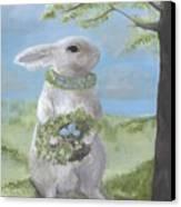 Basil Bunny Canvas Print