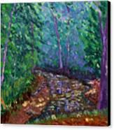 Bcsp 9-20 Canvas Print by Stan Hamilton