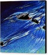 Beach Sinuosity Canvas Print