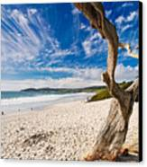 Beach View Carmel By The Sea California Canvas Print by George Oze