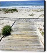 Beach Walk Canvas Print by Carol Groenen