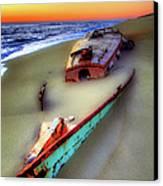 Beached Beauty Canvas Print by Dan Carmichael