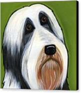 Bearded Collie Canvas Print by Leanne Wilkes