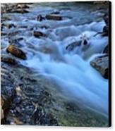 Beauty Creek Canvas Print by Larry Ricker