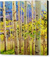 Beauty Of Aspen Colorado Canvas Print