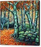 Beech Woods Canvas Print