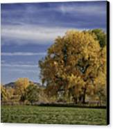 Belfry Fall Landscape 7 Canvas Print by Roger Snyder