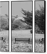 Bench View Triptic Canvas Print
