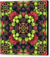 Berry Good Canvas Print by Bell And Todd