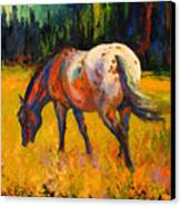 Best End Of An Appy Canvas Print by Marion Rose