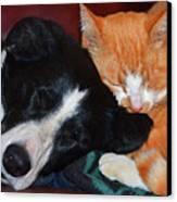 Best Friends Canvas Print by Susie Fisher