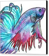 Betta Fish Canvas Print by Jenn Cunningham
