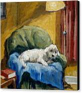 Bichon Frise On Chair Canvas Print by Thor Wickstrom