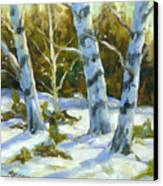 Big Birches In Winter Canvas Print