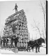 Big Load Of Logs On A Horse Drawn Sled Canvas Print by Everett