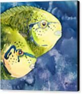 Bignose Unicornfish Canvas Print by Tanya L Haynes - Printscapes