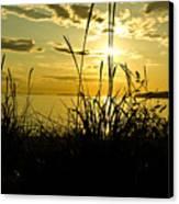 Birch Bay Sunset Canvas Print