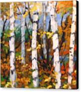 Birches 03 Canvas Print
