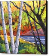 Birches 06 Canvas Print