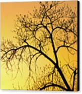 Bird At Sunset Canvas Print by James Steele