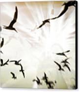Birds Explosion Canvas Print