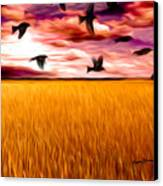 Birds Over Wheat Field Canvas Print by Anthony Caruso