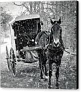 Black And White Amish Buggy Canvas Print