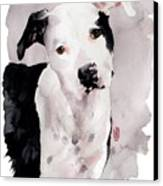 Black And White Pit Canvas Print