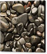 Black River Stones Portrait Canvas Print by Steve Gadomski