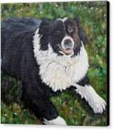 Blackie Canvas Print by Marilyn  McNish