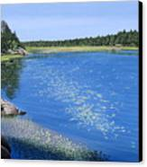 Blackstone Bog Canvas Print
