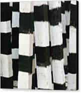 Blanco Y Negro Canvas Print