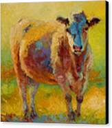 Blondie - Cow Canvas Print by Marion Rose