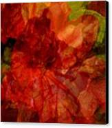 Blood Rose Canvas Print