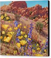 Blooming Desert Canvas Print