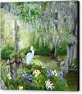 Blooming Swamp Canvas Print by Darlene Green