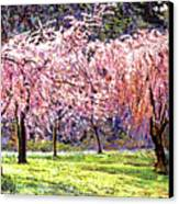 Blossom Fantasy Canvas Print