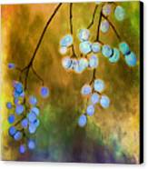 Blue Autumn Berries Canvas Print by Judi Bagwell