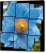 Blue Flower Photo Sculpture  Butchart Gardens  Victoria Bc Canada Canvas Print