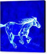 Blue Horse Canvas Print