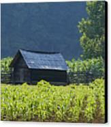 Blue Mountain Farm Canvas Print