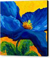 Blue Poppy Canvas Print by Marion Rose