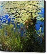 Blue Sky Pond Canvas Print