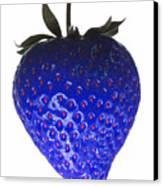 Blue Strawberry Canvas Print