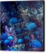 Blue Tang Sea Fan   Canvas Print