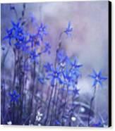 Bluebell Heaven Canvas Print by Priska Wettstein