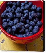 Blueberries In Red Bowl Canvas Print